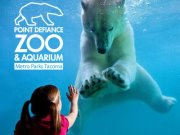 Point Defiance Zoo and Aquarium photo