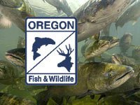 Oregon Department of Fish and Wildlife photo